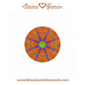 Brian Gavin 1.085 D IF Signature Round